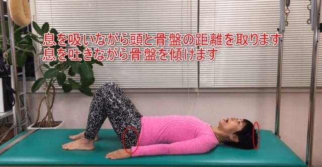 03-04_息を吸いながら頭と骨盤の距離を取ります息を吐きながら骨盤を傾けます