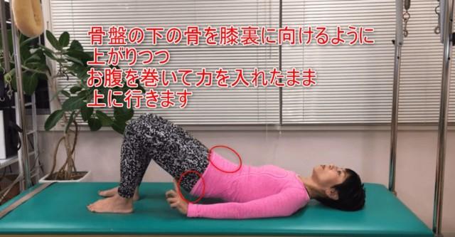 03-06_骨盤の下の骨を膝裏に向けるように上がりつつお腹を巻いて力を入れたまま上に行きます
