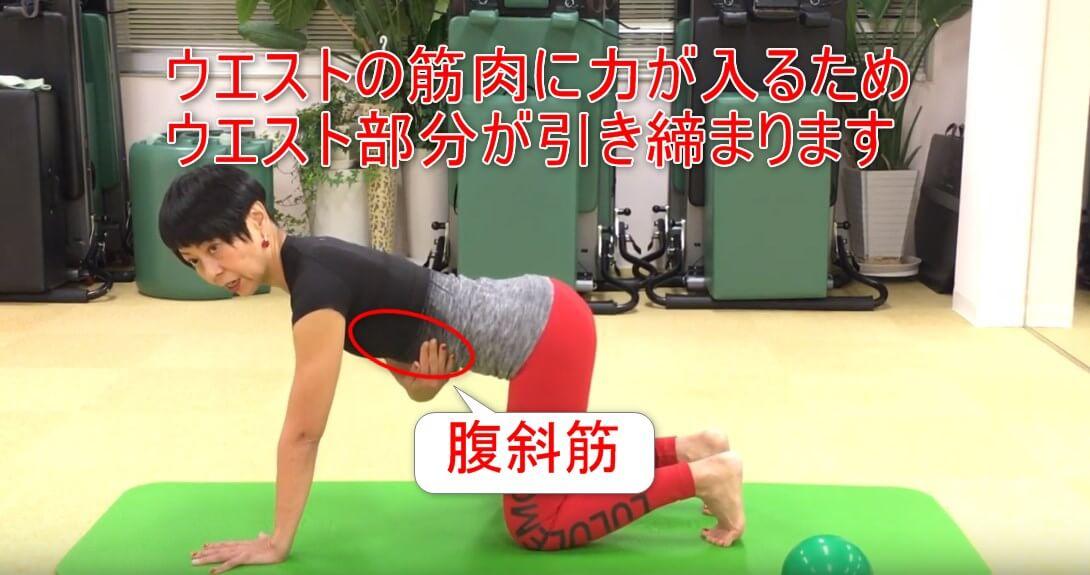 24-06_ウエストの筋肉に力が入るためウエスト部分が引き締まります
