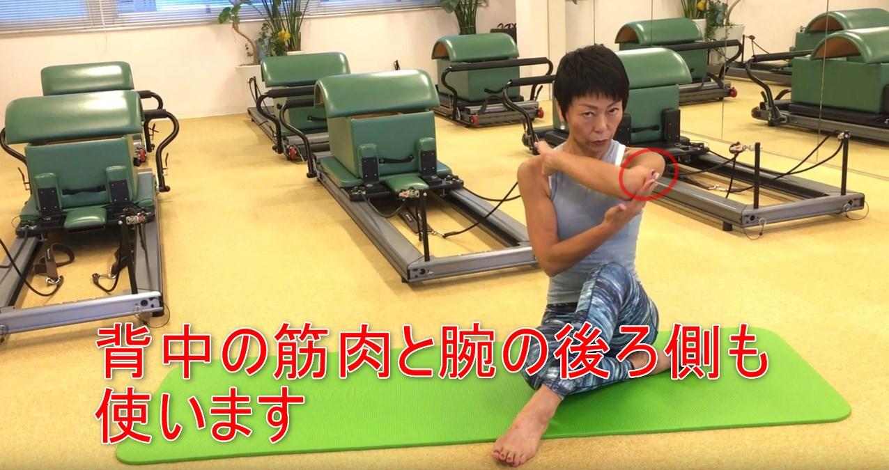 56-08_背中の筋肉と腕の後ろ側も使います