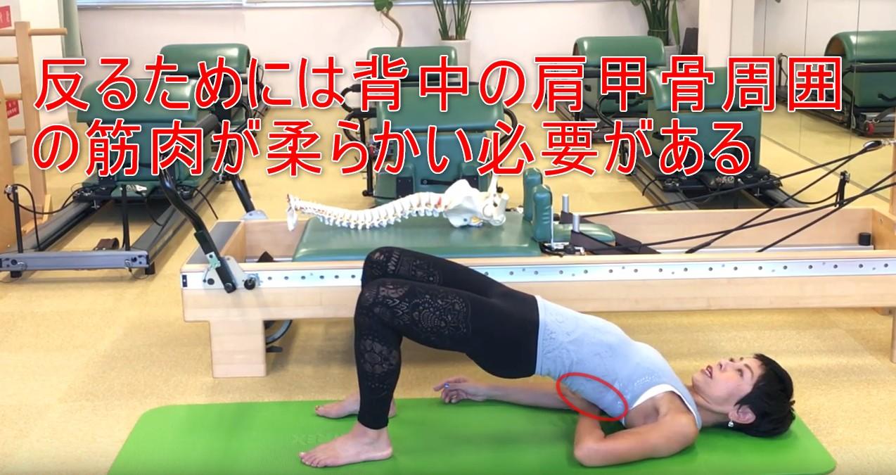 64-06_反るためには背中の肩甲骨周囲の筋肉が柔らかい必要がある
