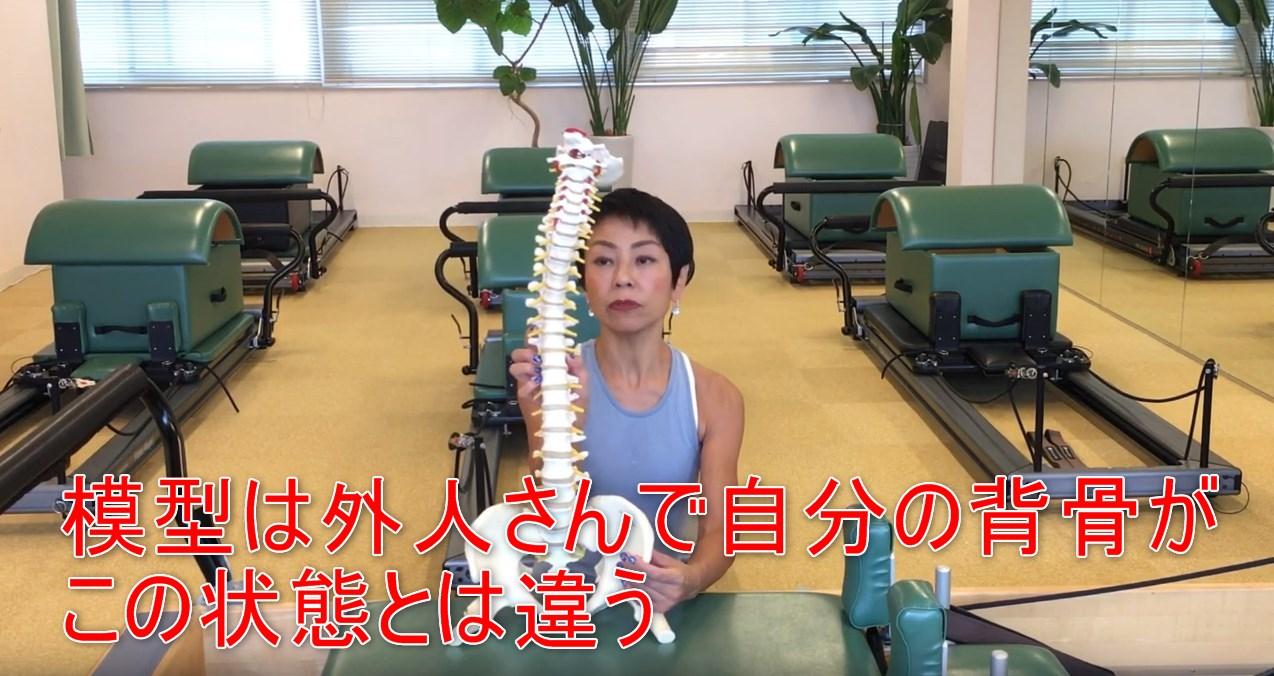 67-04_模型は外人さんで自分の背骨がこの状態とは違う