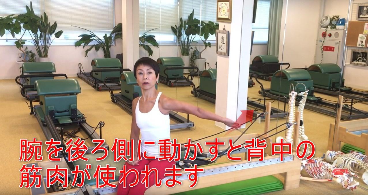 60-02_腕を後ろ側に動かすと背中の筋肉が使われます