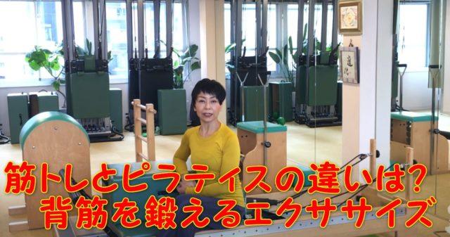 83-01_筋トレとピラティスの違いは?背筋を鍛えるための身体を反らす効果を解説