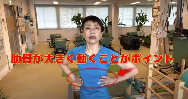 肋骨が柔らかく動きが大きいほど深い呼吸が可能