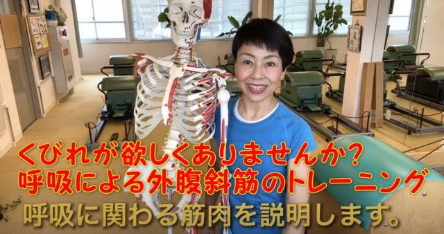 女性のあなた!くびれが欲しくありませんか?呼吸による外腹斜筋のトレーニング