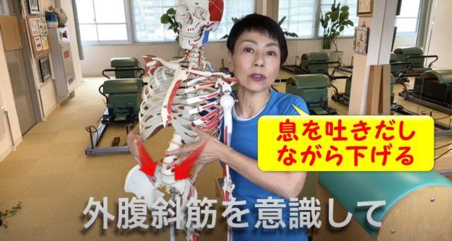 息を吐きながら肋骨を骨盤の方に気持ちよく下げていく