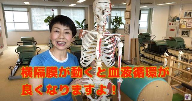 呼吸による横隔膜の動きが身体に与える影響のまとめ